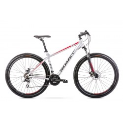 Vélo ROMET MTB 29 pouces RAMBLER R9.1 argent XL